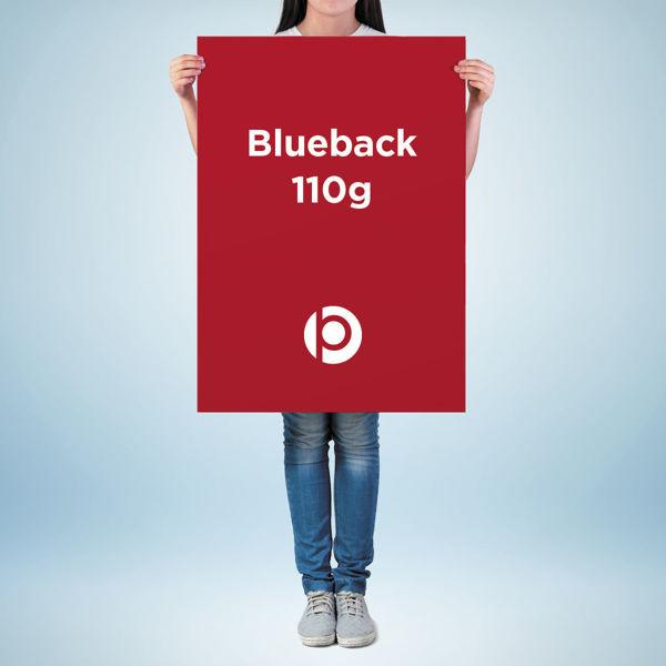 Blueback 110g